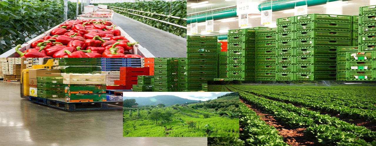 To establish and operate an agro zone