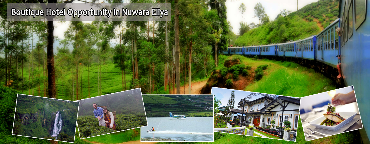 Boutique Hotel Opportunity in Nuwara Eliya