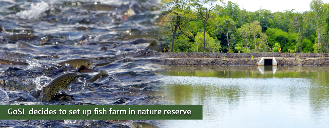 GoSL decides to set up fish farm in nature reserve