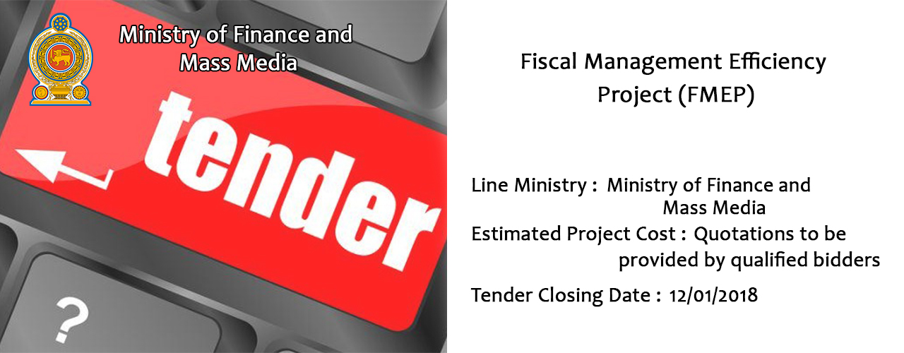 Fiscal Management Efficiency Project (FMEP).