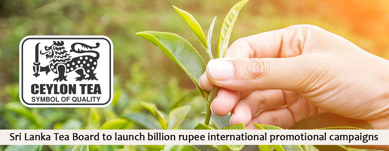 Sri Lanka Tea Board to launch billion rupee international promotional campaigns