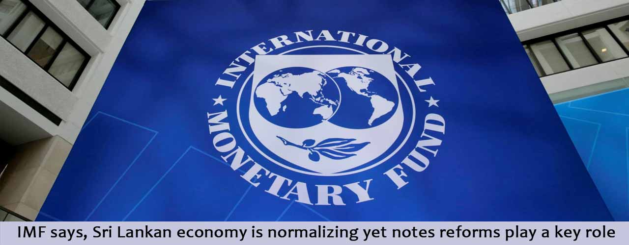 what role does the imf play How well does the imf's standard repertoire of lending, advice adn surveillance work in fragile states not very, according to a recent conversation.