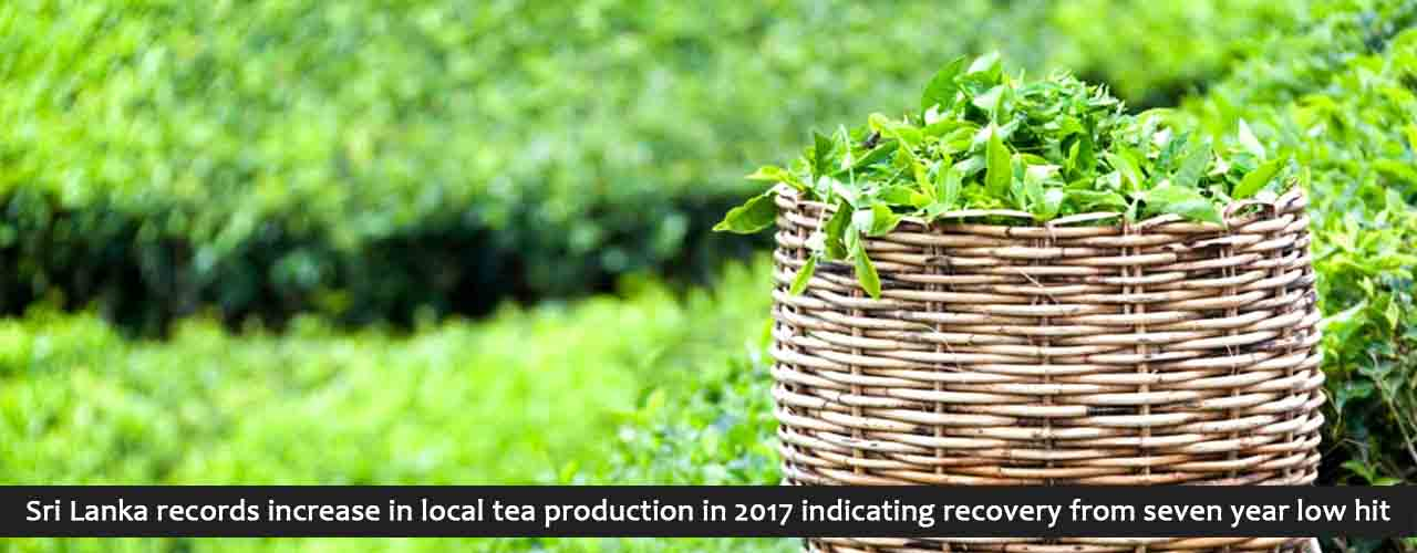 Sri Lanka records increase in local tea production in 2017 indicating recovery from seven year low hit