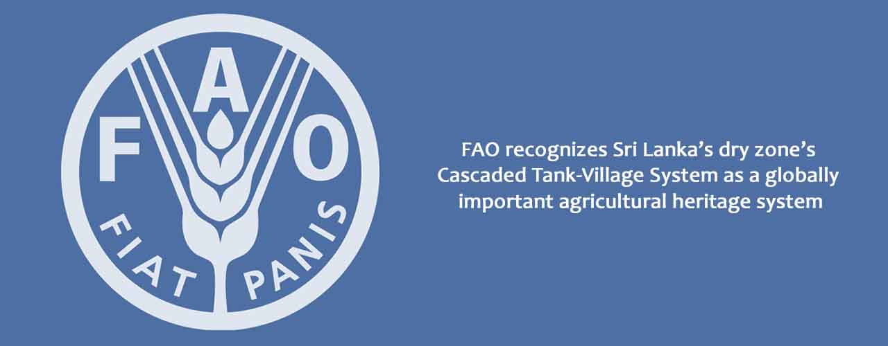 FAO recognizes Sri Lanka's dry zone's Cascaded Tank-Village System as a globally important agricultural heritage system