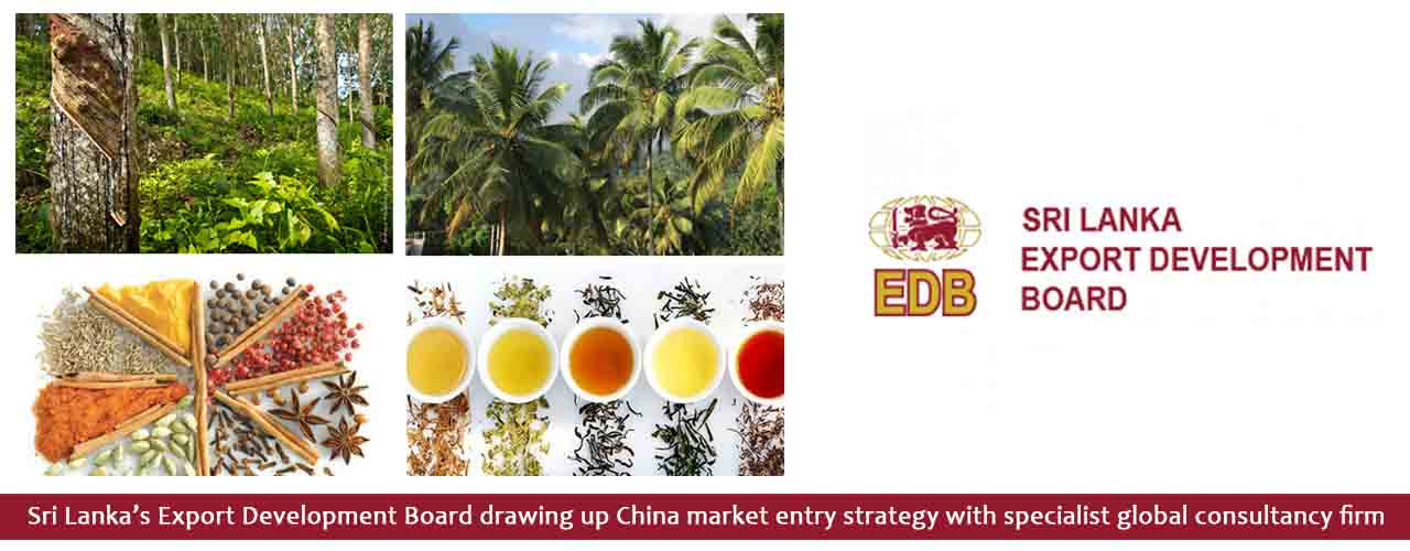 Sri Lanka's Export Development Board drawing up China market entry strategy with specialist global consultancy firm