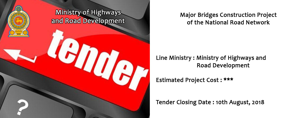 Major Bridges Construction Project of the National Road Network