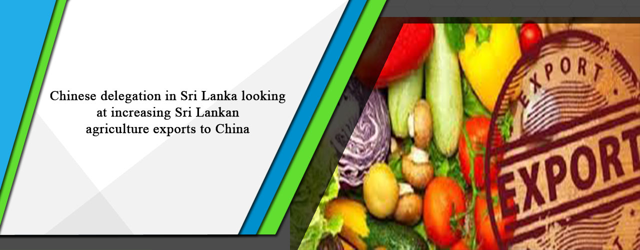 Chinese delegation in Sri Lanka looking at increasing Sri Lankan agriculture exports to China