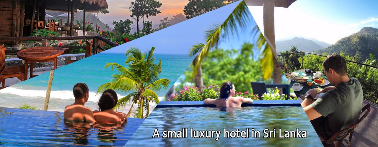 A small luxury hotel in Sri Lanka