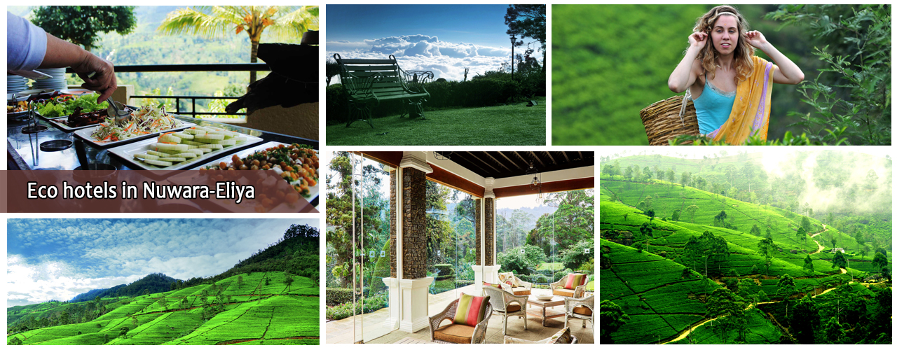 Eco hotels in Nuwara-Eliya