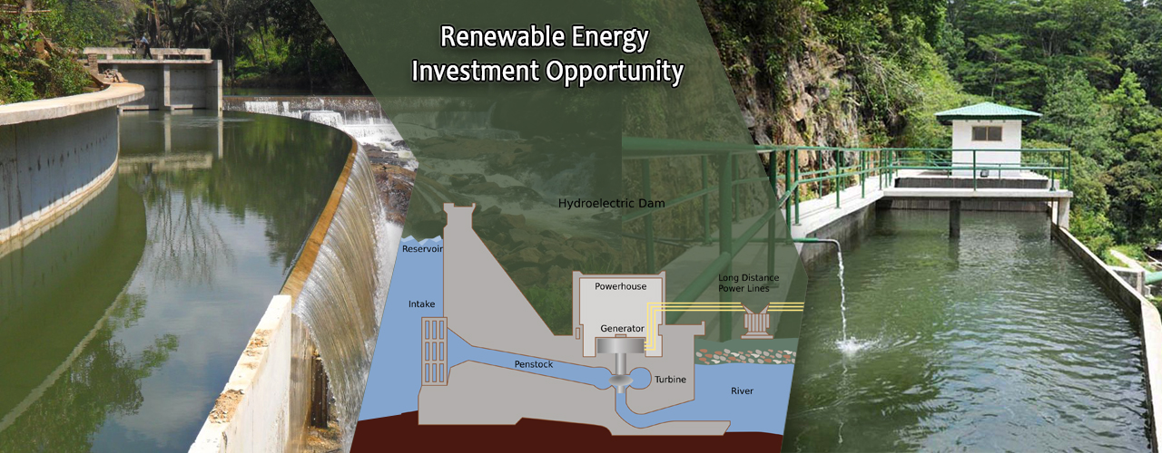Renewable Energy Investment Opportunity