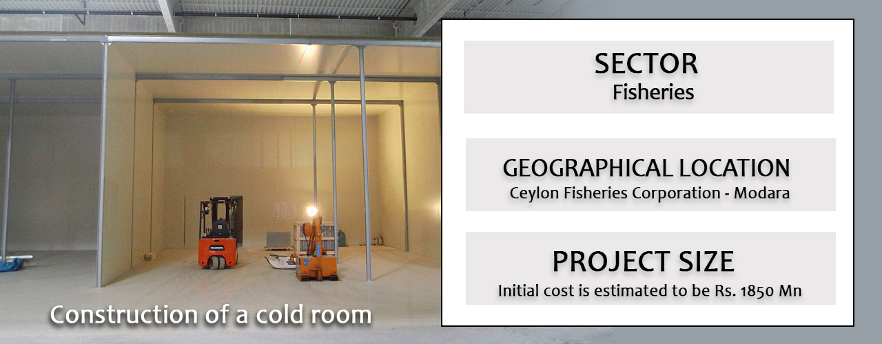 Construction of a cold room