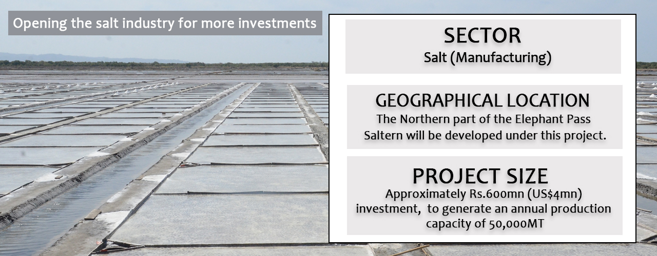 Opening the salt industry for more investments