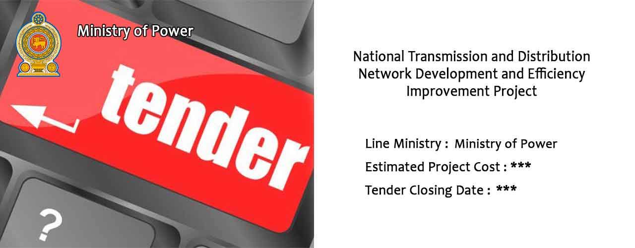National Transmission and Distribution Network Development and Efficiency Improvement Project