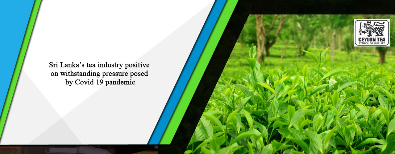 Sri Lanka's tea industry positive on withstanding pressure posed by Covid 19 pandemic
