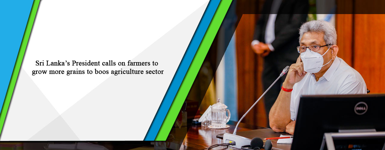 Sri Lanka's President calls on farmers to grow more grains to boos agriculture sector