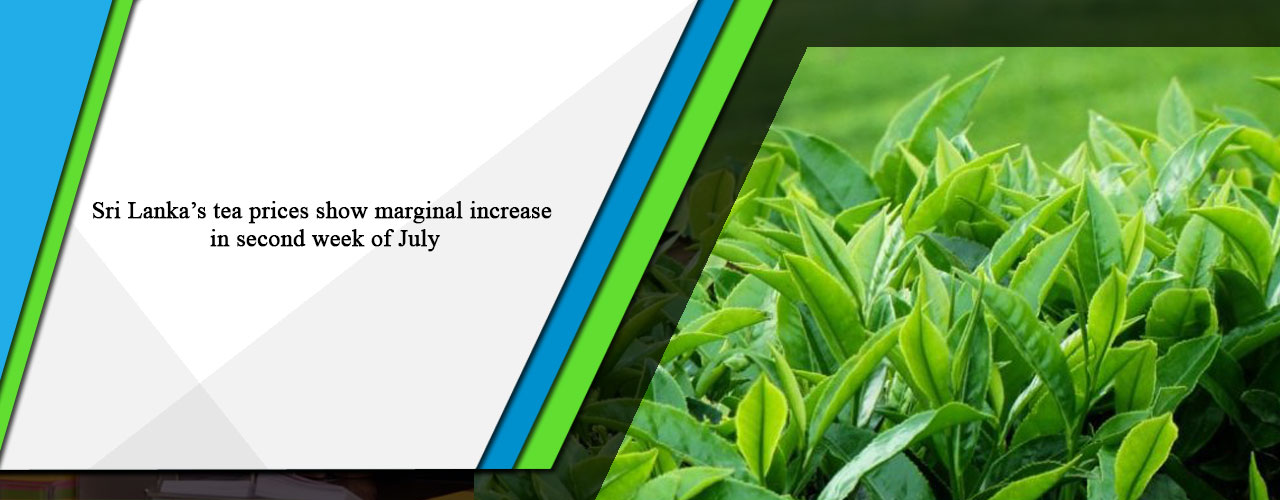 Sri Lanka's tea prices show marginal increase in second week of July