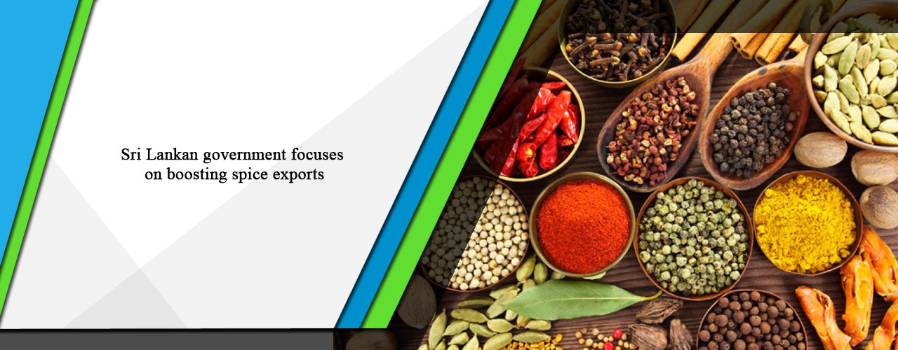 Sri Lankan government focuses on boosting spice exports