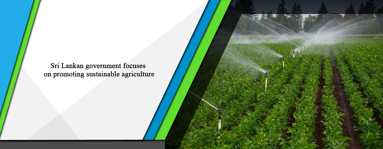 Sri Lankan government focuses on promoting sustainable agriculture