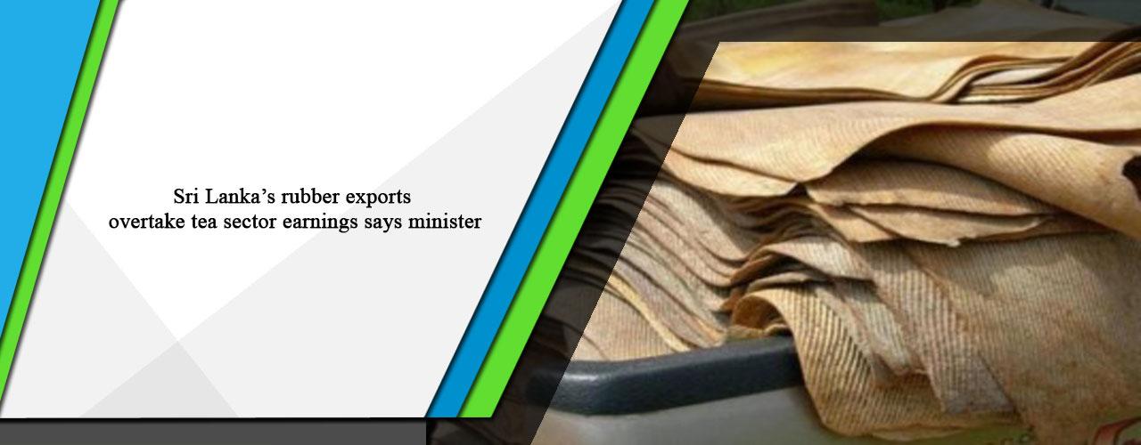 Sri Lanka's rubber exports overtake tea sector earnings says minister