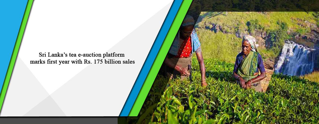 Sri Lanka's tea e-auction platform marks first year with Rs. 175 billion sales