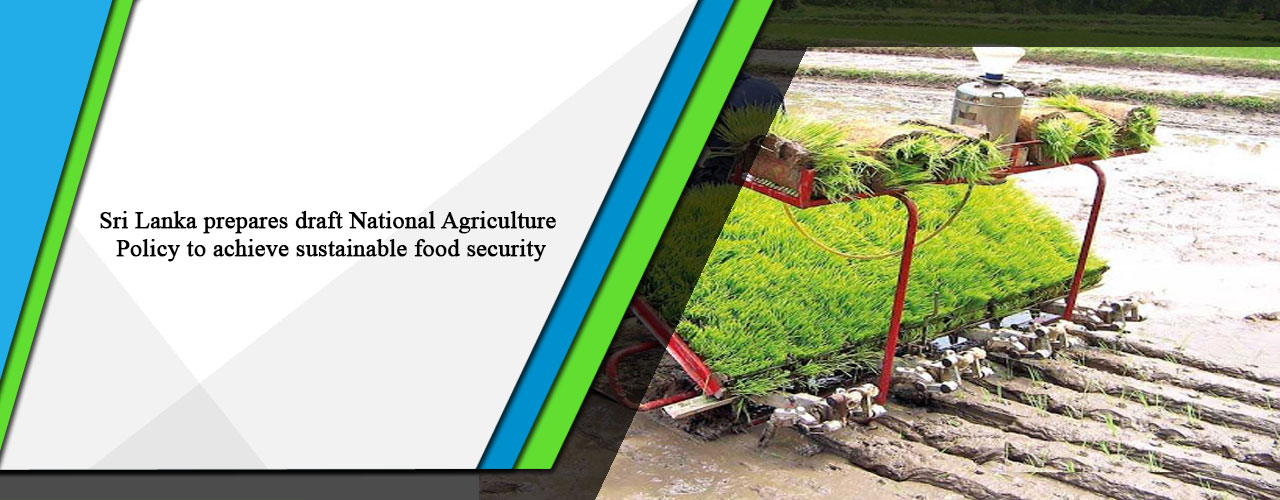 Sri Lanka prepares draft National Agriculture Policy to achieve sustainable food security