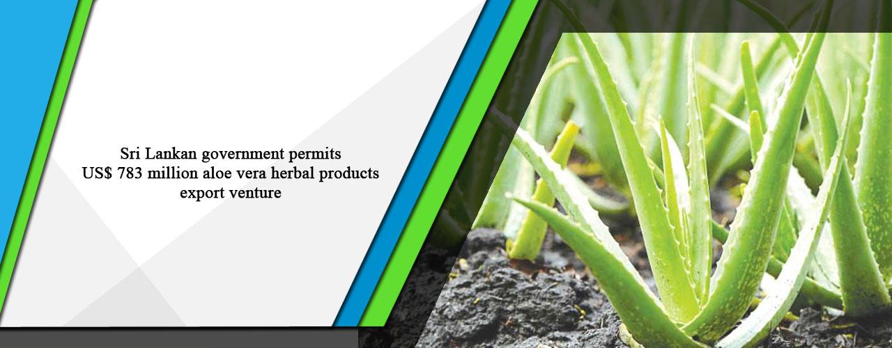 Sri Lankan government permits US$ 783 million aloe vera herbal products export venture