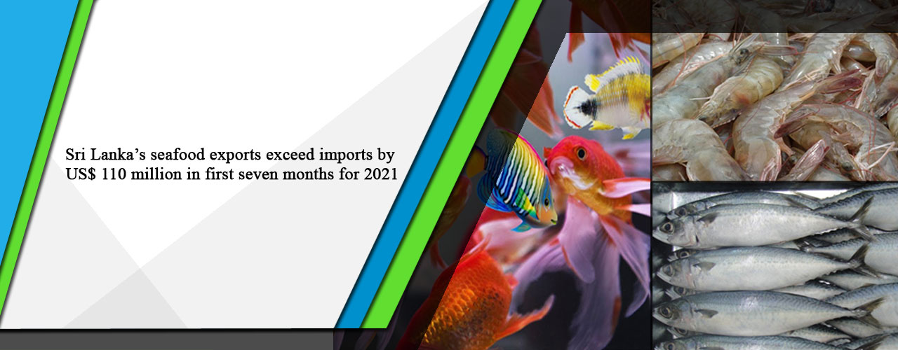 Sri Lanka's seafood exports exceed imports by US$ 110 million in first seven months for 2021