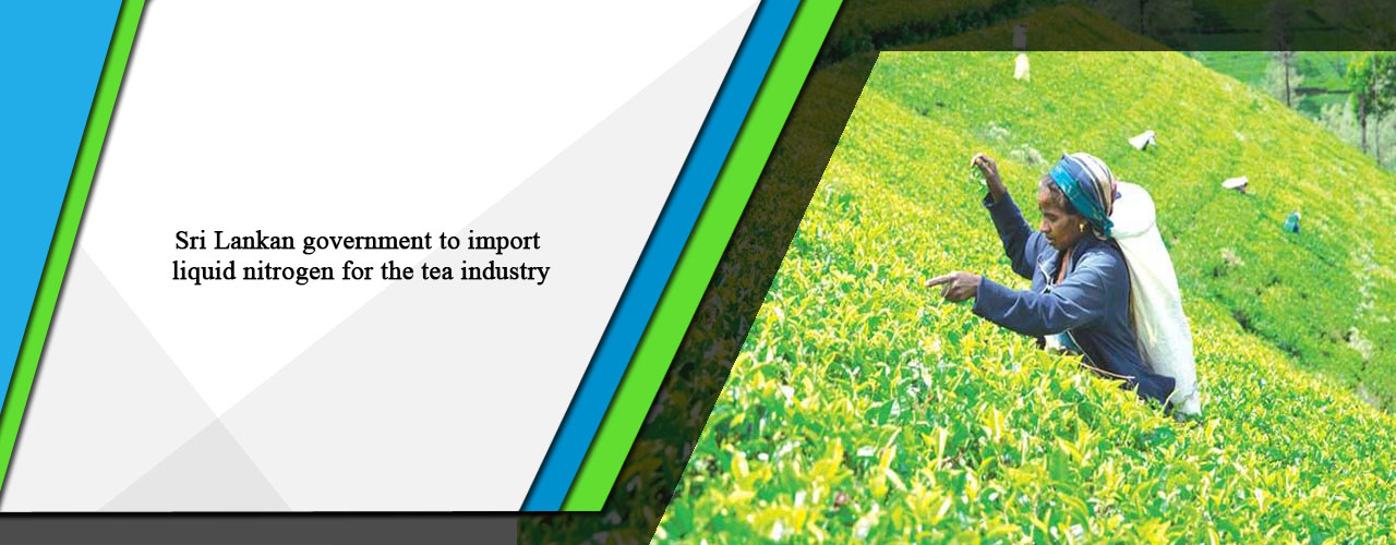 Sri Lankan government to import liquid nitrogen for the tea industry